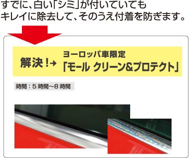 解決!ヨーロッパ車限定「モール プロテクト」 解決!ヨーロッパ車限定「モール クリーン&プロテクト」